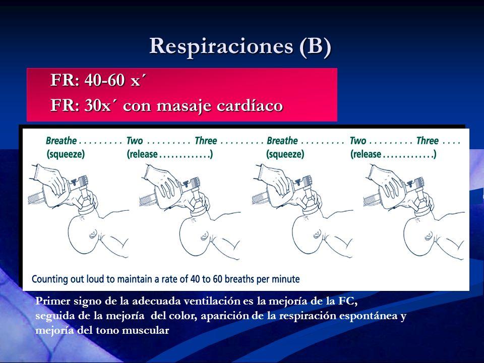 Respiraciones (B) FR: 40-60 x´ FR: 40-60 x´ FR: 30x´ con masaje cardíaco FR: 30x´ con masaje cardíaco Primer signo de la adecuada ventilación es la me