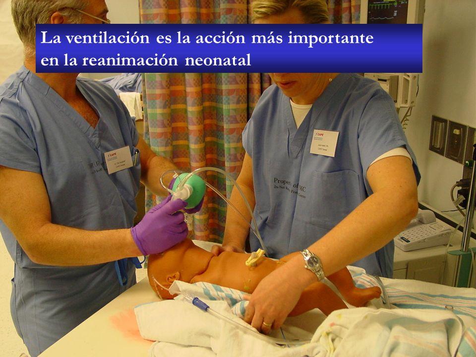 La ventilación es la acción más importante en la reanimación neonatal