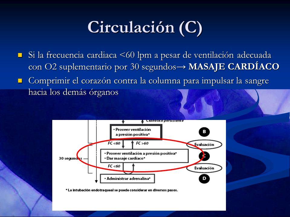 Circulación (C) Si la frecuencia cardiaca <60 lpm a pesar de ventilación adecuada con O2 suplementario por 30 segundos MASAJE CARDÍACO Si la frecuenci