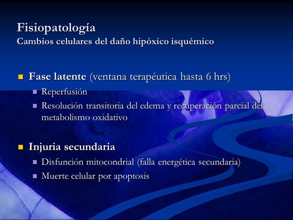 Fisiopatología Cambios celulares del daño hipóxico isquémico Fase latente (ventana terapéutica hasta 6 hrs) Fase latente (ventana terapéutica hasta 6