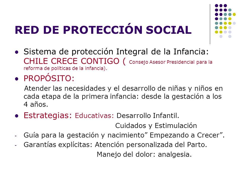 RED DE PROTECCIÓN SOCIAL Sistema de protección Integral de la Infancia: CHILE CRECE CONTIGO ( Consejo Asesor Presidencial para la reforma de políticas