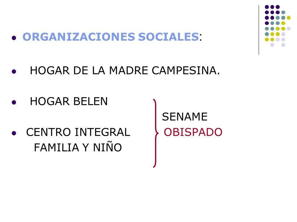 ORGANIZACIONES SOCIALES : HOGAR DE LA MADRE CAMPESINA. HOGAR BELEN SENAME CENTRO INTEGRAL OBISPADO FAMILIA Y NIÑO