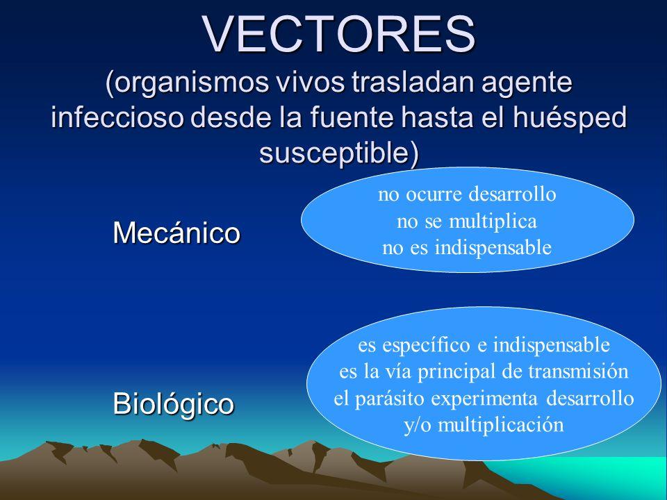 VECTORES (organismos vivos trasladan agente infeccioso desde la fuente hasta el huésped susceptible) MecánicoBiológico no ocurre desarrollo no se mult