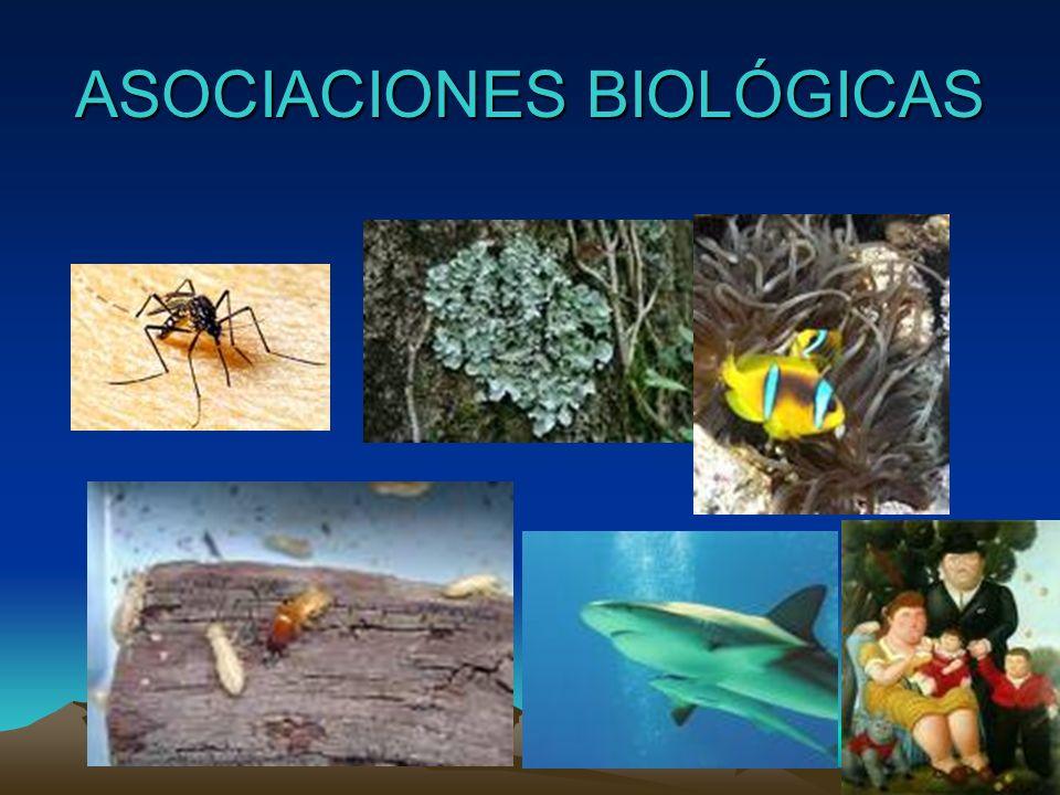 CICLOS BIOLÓGICOS (desarrollo del parásito en sus diversas etapas) Ciclo Directo Indirecto
