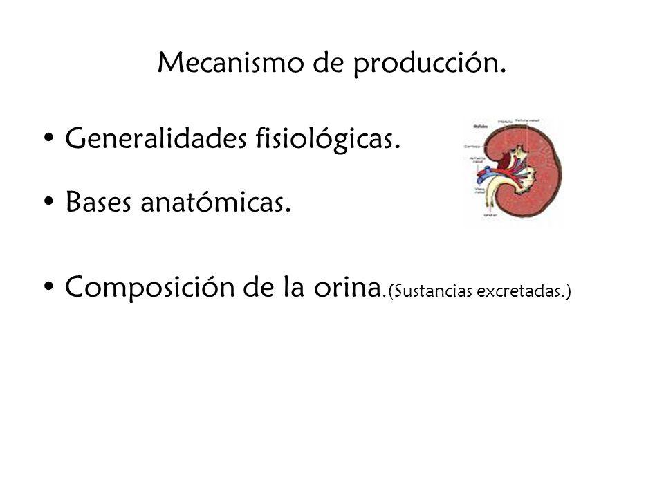 Mecanismos de expresión.1.Indicadores directos: Ingesta de agua y electrolitos.