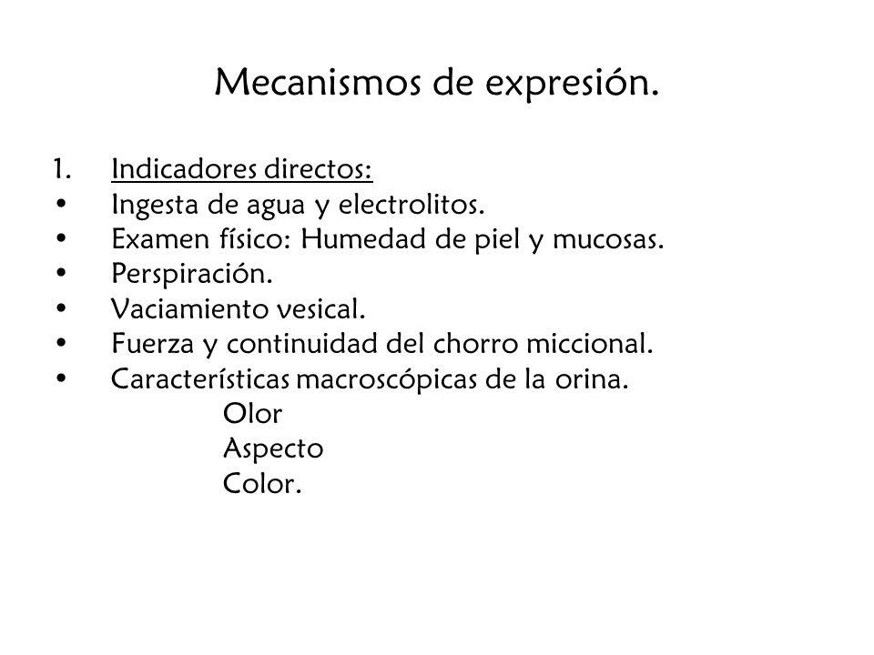 Mecanismos de expresión.2.
