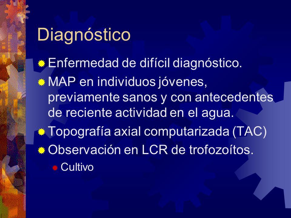 Diagnóstico Enfermedad de difícil diagnóstico. MAP en individuos jóvenes, previamente sanos y con antecedentes de reciente actividad en el agua. Topog