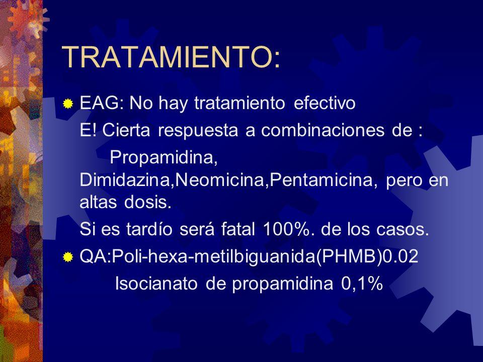TRATAMIENTO: EAG: No hay tratamiento efectivo E! Cierta respuesta a combinaciones de : Propamidina, Dimidazina,Neomicina,Pentamicina, pero en altas do