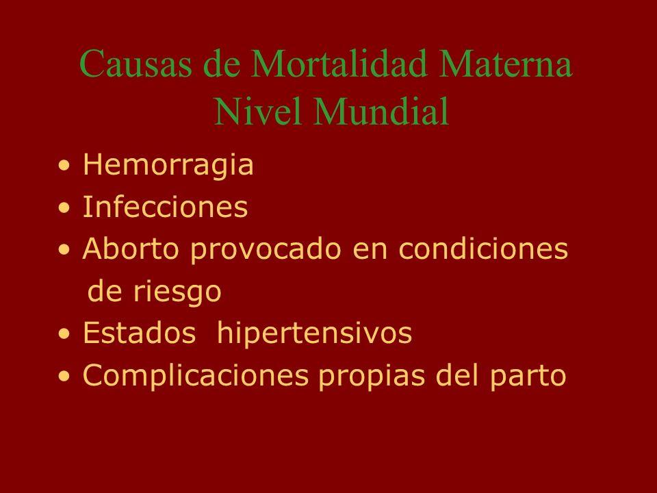 FACTORES CAUSALES DE MUERTE MATERNA, CHILE 2000-2003 O06 Aborto no especificado 9 2 O10 Hipertensión preexistente que complica el embarazo, el parto y el puerperio 1 – O13 Hipertensión gestacional sin proteinuria significativa 2 – O14 Hipertensión gestacional con proteinuria significativa – 1 O15 Eclampsia 9 -3 O41 Otros trastornos del líquido amniótico y de las membranas – 5 O62 Anormalidades de la dinámica del trabajo de parto 2- 1 O72 Hemorragia postparto 3 - 1 O85 Sepsis puerperal 1- 3 O88 Embolia obstétrica 3– O99 Otras enfermedades maternas clasificables en otra parte, pero que complican el embarazo, el parto y el puerperio 7 7 Total 49 30 Tasa 2003 12.2 por 100.000 N.V.