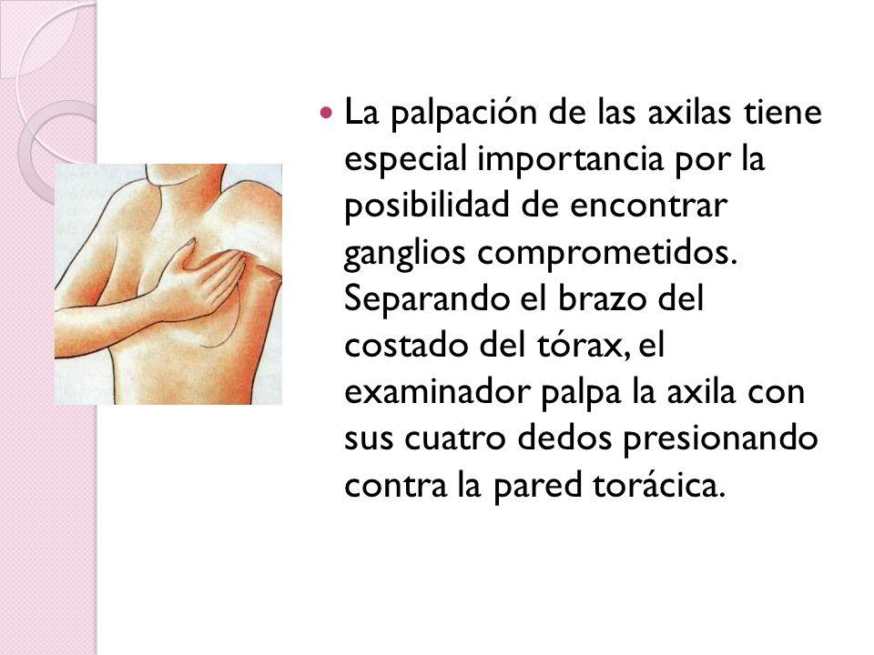 La palpación de las axilas tiene especial importancia por la posibilidad de encontrar ganglios comprometidos. Separando el brazo del costado del tórax