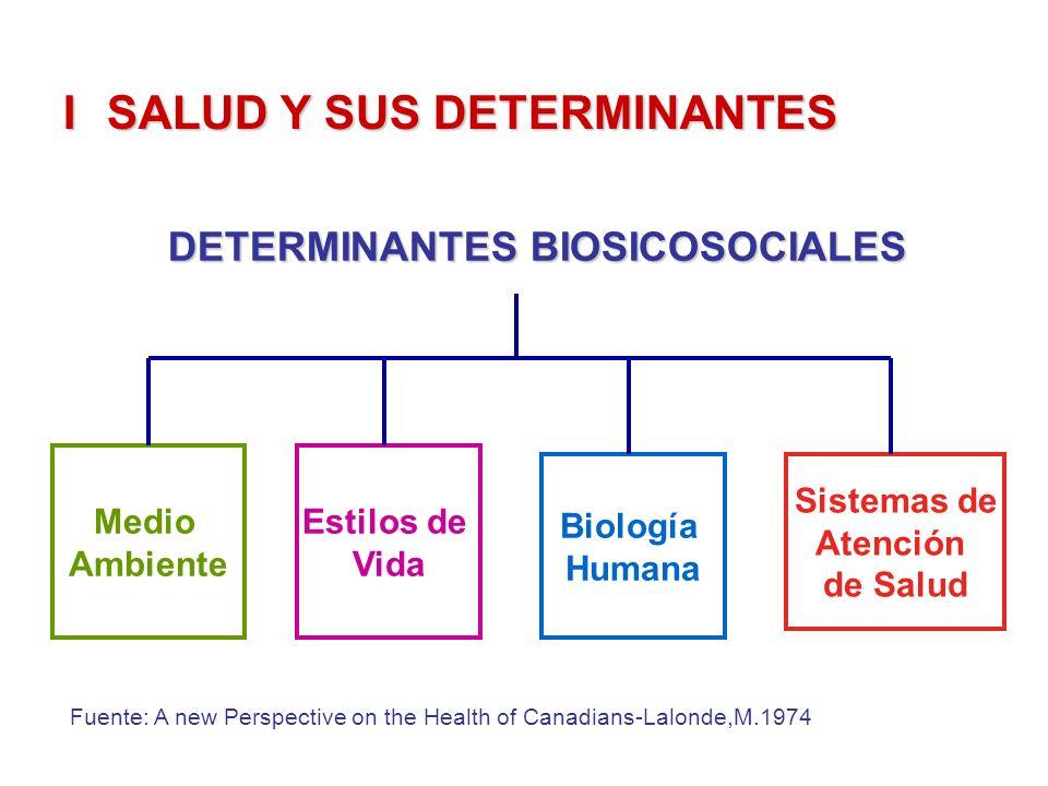 ISALUD Y SUS DETERMINANTES DETERMINANTES BIOSICOSOCIALES Medio Ambiente Estilos de Vida Biología Humana Sistemas de Atención de Salud Fuente: A new Pe