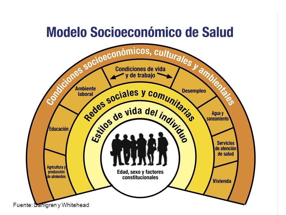 Diferencias socioeconómicas en condiciones de salud, Chile 2002 Condición de saludNSE bajoNSE medioNSE alto Hipertensión1,71,41.0 Diabetes3,02,01,0 Posible angina2,972,021,0 Músculo-esquelético1,561,351,0 Enf.Respiratoria Cr.2,241,431,0 Test susurro alterado3,161,851,0 Deterioro cognitivo16,92,071,0 Obesidad1,61,21,0 Tabaquismo0,71,21,0 Sedentarismo2,81,31,0 Fuente: Informe, Encuesta Nacional Salud, 2002