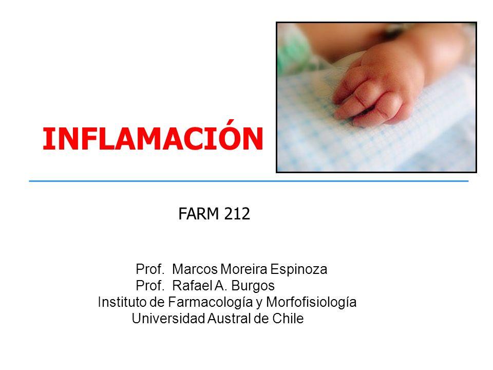 MEDIADORES QUMICOS DE LA RESPUESTA INFLAMATORIA AGUDA a)PROTEASAS PLASMÁTICAS (FIJACION DE COMPLEMENTO, CININAS, PROT DE COAGULACION Y FIBRINOLITICAS) b)MEDIADORES LIPÍDICOS (PG, LEUCOTRIENOS, PAF) c)PÉPTIDOS Y AMINAS (HISTAMINA, SEROTONINA, NEUROPEPTIDOS) d)OXIDO NÍTRICO (iNOS) ROS (radicales derivados del oxígeno) e)CITOQUINAS PROINFLAMATORIAS (IL-1, TNF, IL-6, IL-4, IL-8, INF, IL-12