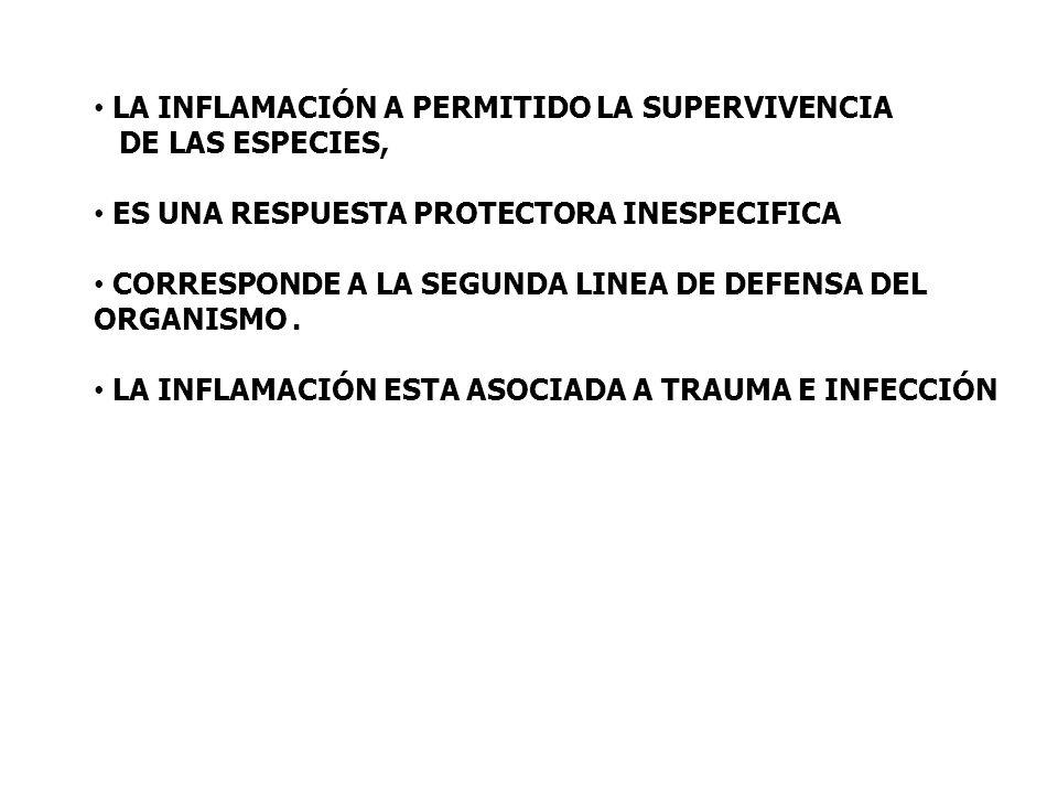 MEDIADORES QUMICOS DE LA RESPUESTA INFLAMATORIA AGUDA a)PROTEASAS PLASMÁTICAS FIJACION DE COMPLEMENTO: opsonizacion, quimiotaxis CININAS: vasodilatación, aumento permeabilidad PROT DE COAGULACION Y FIBRINOLITICAS: amplifican la inflamación b) MEDIADORES LIPÍDICOS PG: aumento permeabilidad LEUCOTRIENOS: aumentan permeabilidad, adhesión, quimiotaxis, activación de leucocitos PAF)