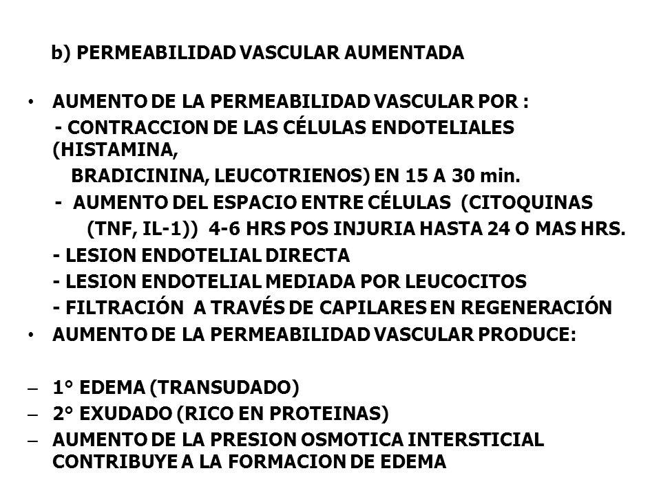 b) PERMEABILIDAD VASCULAR AUMENTADA AUMENTO DE LA PERMEABILIDAD VASCULAR POR : - CONTRACCION DE LAS CÉLULAS ENDOTELIALES (HISTAMINA, BRADICININA, LEUC