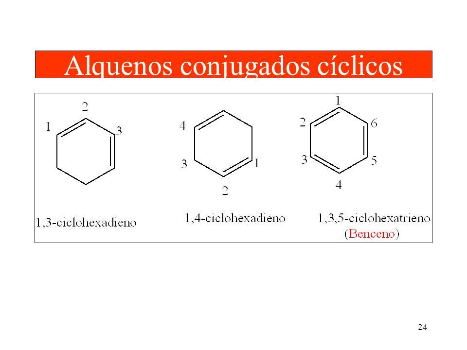 24 Alquenos conjugados cíclicos