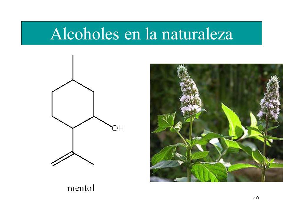 40 Alcoholes en la naturaleza