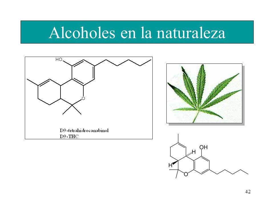 42 Alcoholes en la naturaleza