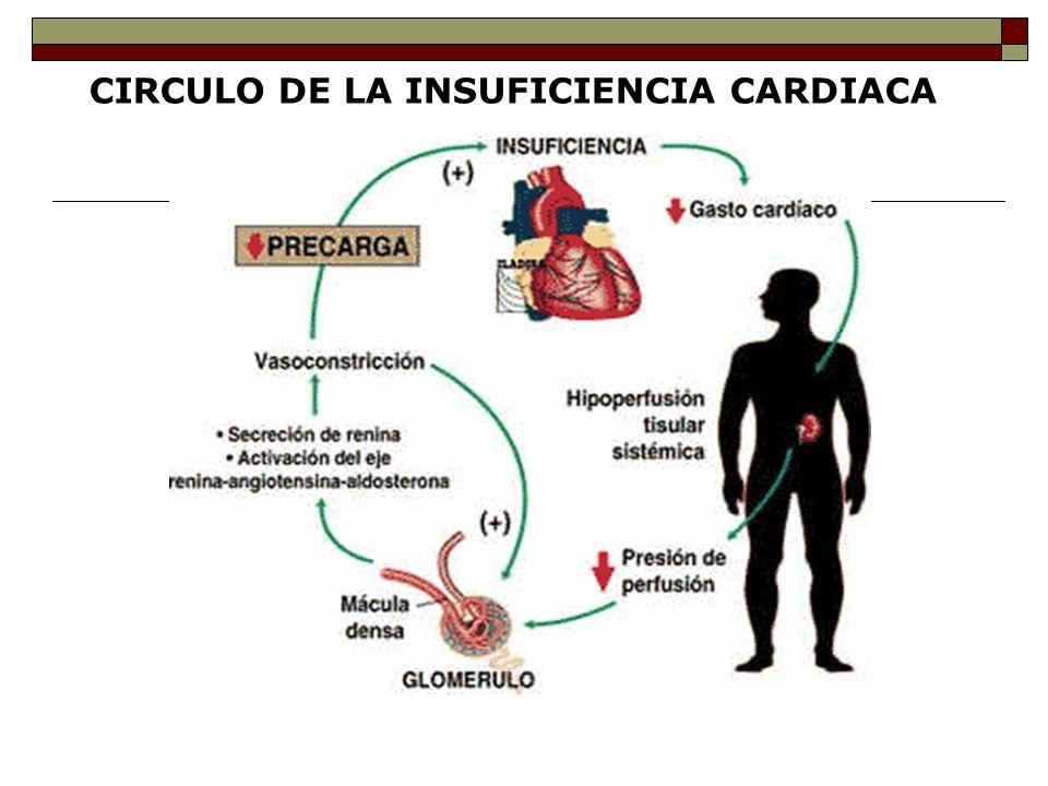 CIRCULO DE LA INSUFICIENCIA CARDIACA