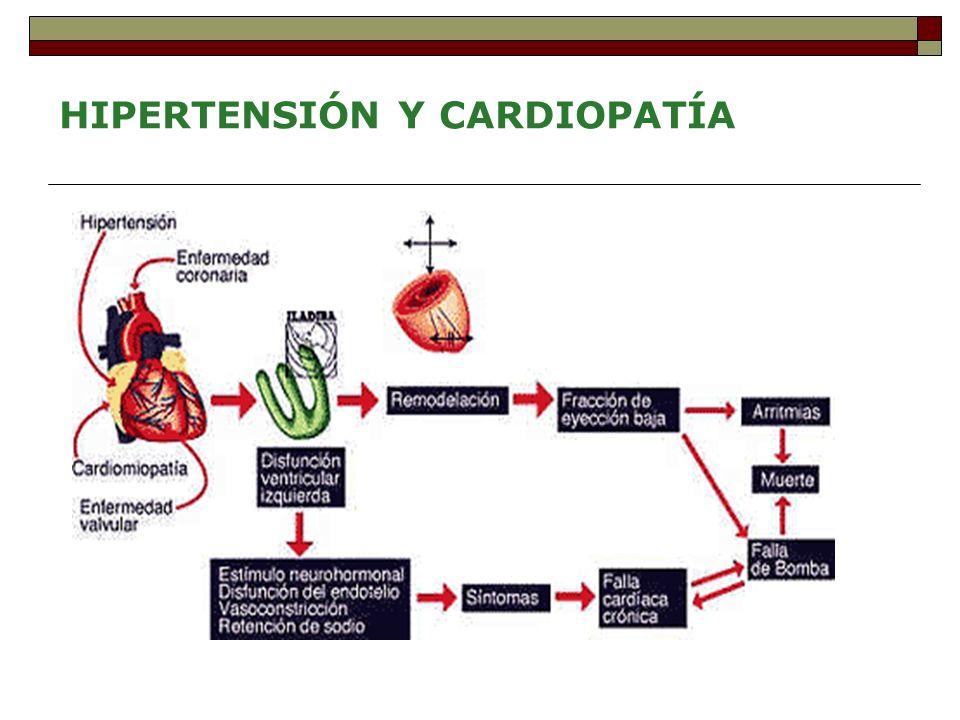 HIPERTENSIÓN Y CARDIOPATÍA