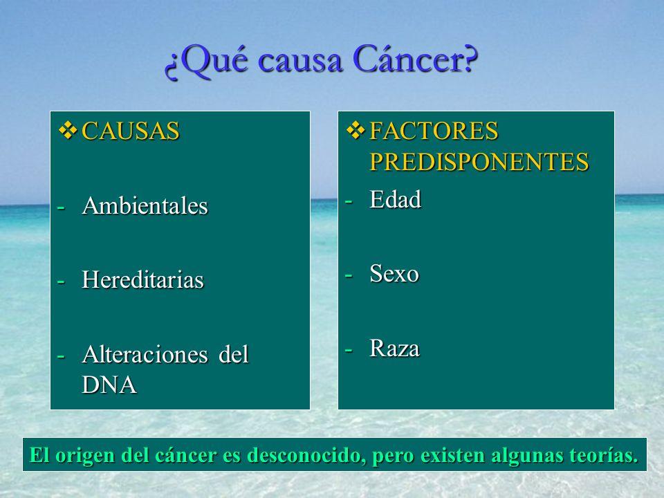 CAUSAS CAUSAS -Ambientales -Hereditarias -Alteraciones del DNA FACTORES PREDISPONENTES -Edad -Sexo -Raza El origen del cáncer es desconocido, pero exi