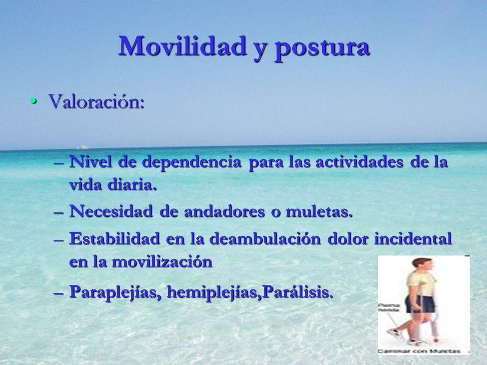 Movilidad y postura Valoración:Valoración: –Nivel de dependencia para las actividades de la vida diaria. –Necesidad de andadores o muletas. –Estabilid