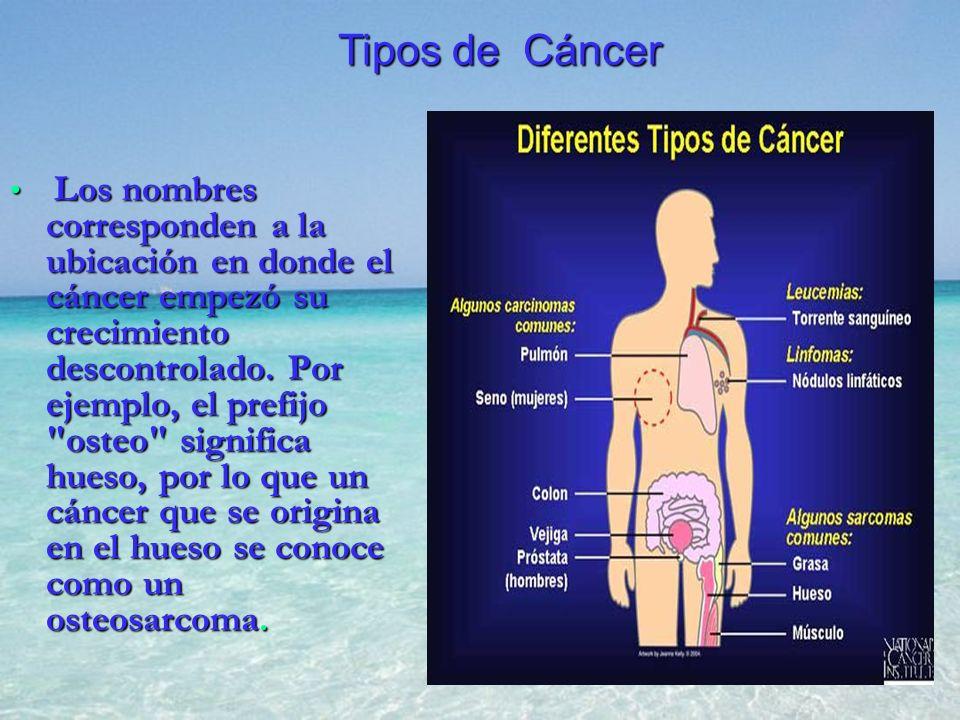 Los nombres corresponden a la ubicación en donde el cáncer empezó su crecimiento descontrolado. Por ejemplo, el prefijo