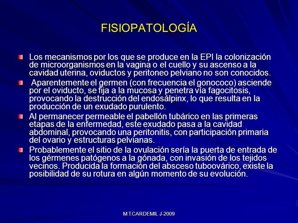 M.T.CARDEMIL J-2009 VÍAS DE PROPAGACIÓN Cervicitis Endometritis Salpingitis Absceso Tubo-ovárico Pelvi-peritonitis Absceso de Douglas Piosalpinx Absceso Tubárico Hidrosalpinx Parametritis