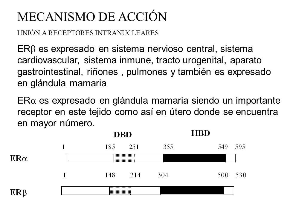 RAMS 1.AUMENTO DE PESO POR RETENCIÓN DE FLUIDOS O EFECTO ANABOLICO 2.NAUSEAS, BOCHORNOS, DEPRESIÓN O IRRITABILIDAD 3.OCASIONALMENTE ACNE Y PIGMENTACIÓN DE LA PIEL 4.AMENORREAS DE DURACIÓN VARIABLES POSTRATAMIENTO PUEDEN SER OBSERVADAS