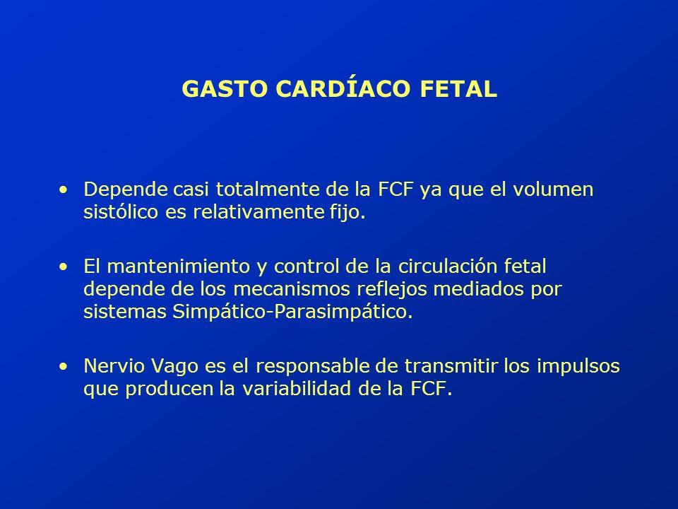 Semanas de gestación Latidos / minuto 160 120 Predominio simpático Maduración parasimpática EVOLUCION DE LA FC BASAL
