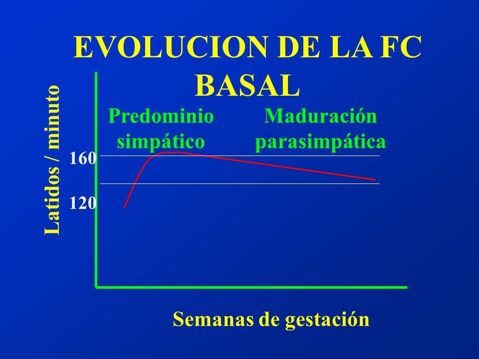 Resumiendo: ¿ cuál es el Patrón Normal de la FCF en el T.