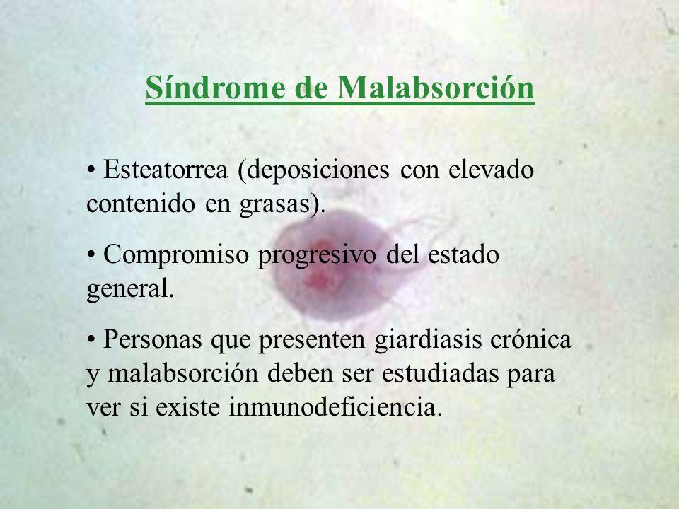 Síndrome de Malabsorción Esteatorrea (deposiciones con elevado contenido en grasas). Compromiso progresivo del estado general. Personas que presenten