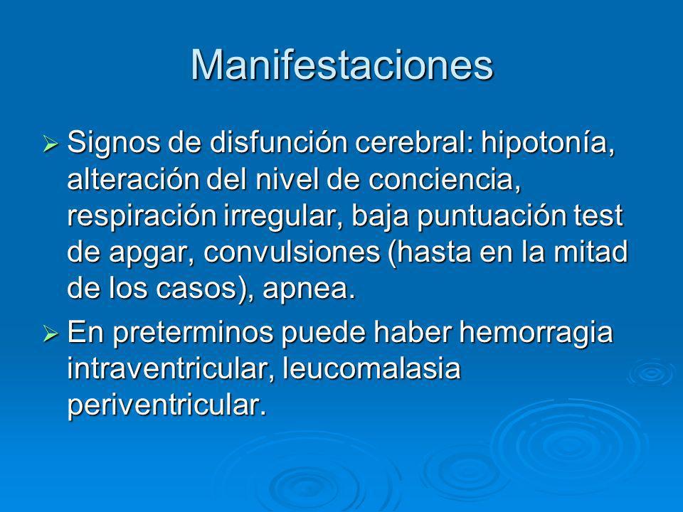 Manifestaciones Signos de disfunción cerebral: hipotonía, alteración del nivel de conciencia, respiración irregular, baja puntuación test de apgar, co