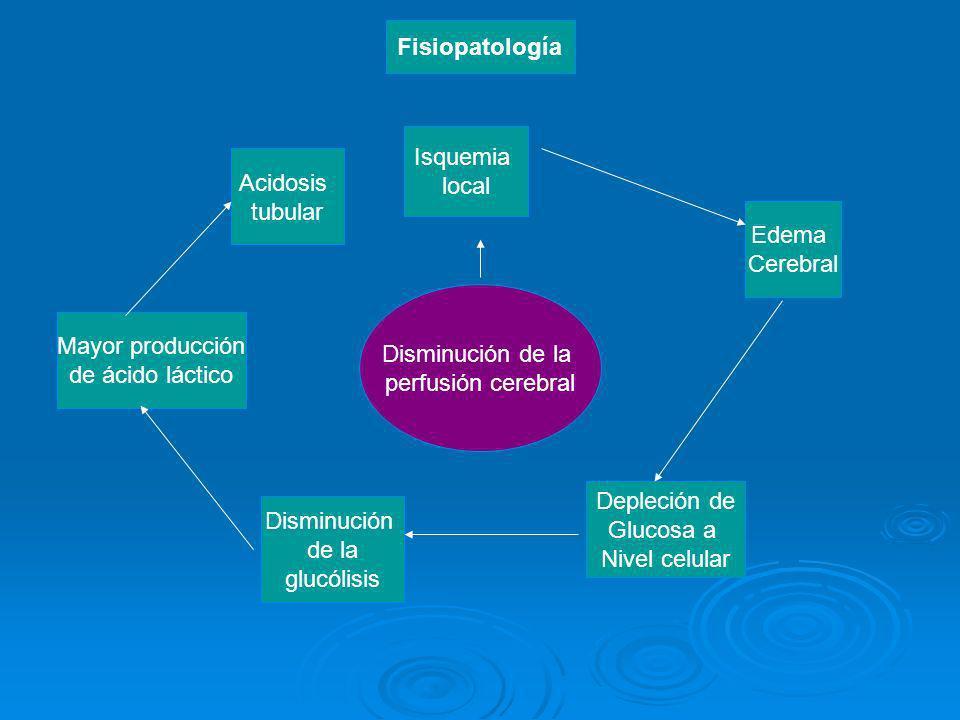 Disminución de la perfusión cerebral Disminución de la glucólisis Depleción de Glucosa a Nivel celular Edema Cerebral Isquemia local Mayor producción