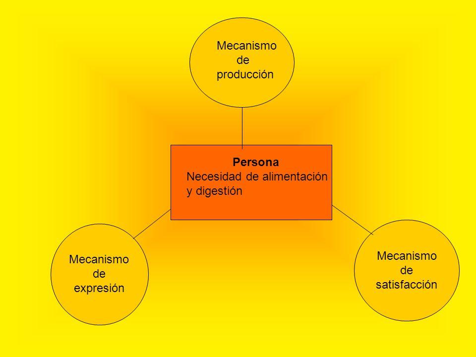 Mecanismo de Producción ¿ Cómo se regula la digestión.