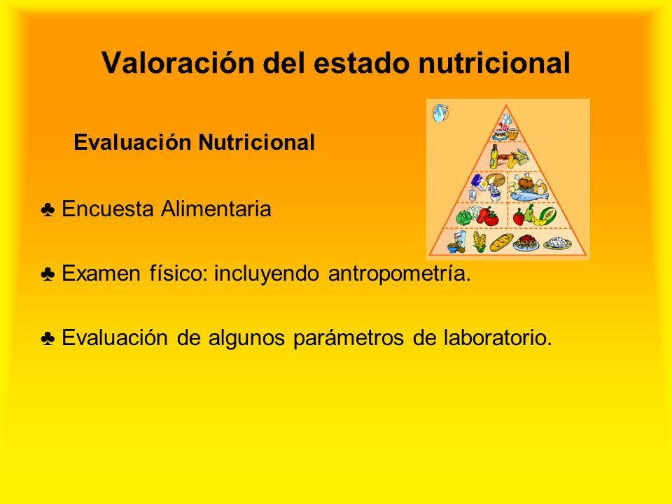 Valoración del estado nutricional Evaluación Nutricional Encuesta Alimentaria Examen físico: incluyendo antropometría. Evaluación de algunos parámetro