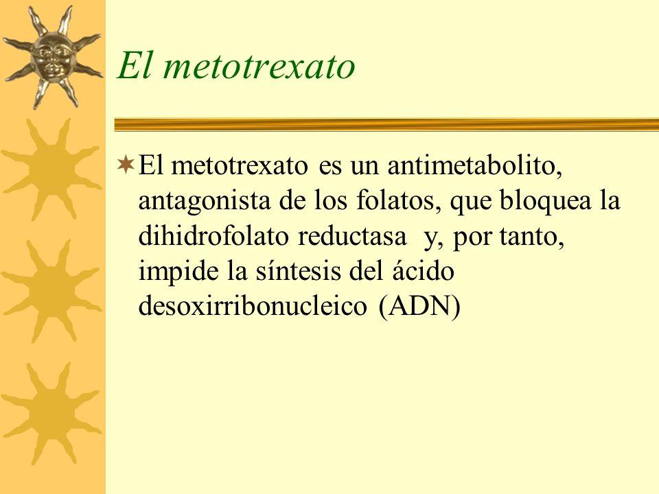 El metotrexato El metotrexato es un antimetabolito, antagonista de los folatos, que bloquea la dihidrofolato reductasa y, por tanto, impide la síntesi