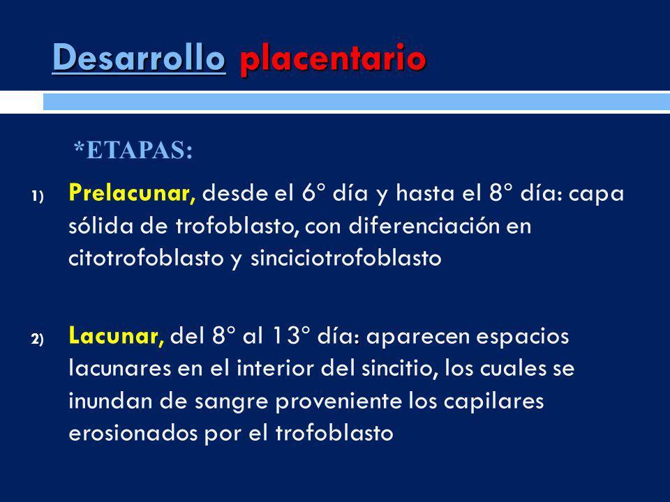 Desarrollo placentario 1) Prelacunar, desde el 6º día y hasta el 8º día: capa sólida de trofoblasto, con diferenciación en citotrofoblasto y sinciciot