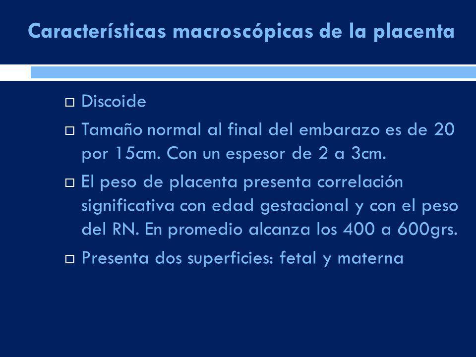 Características macroscópicas de la placenta Discoide Tamaño normal al final del embarazo es de 20 por 15cm. Con un espesor de 2 a 3cm. El peso de pla