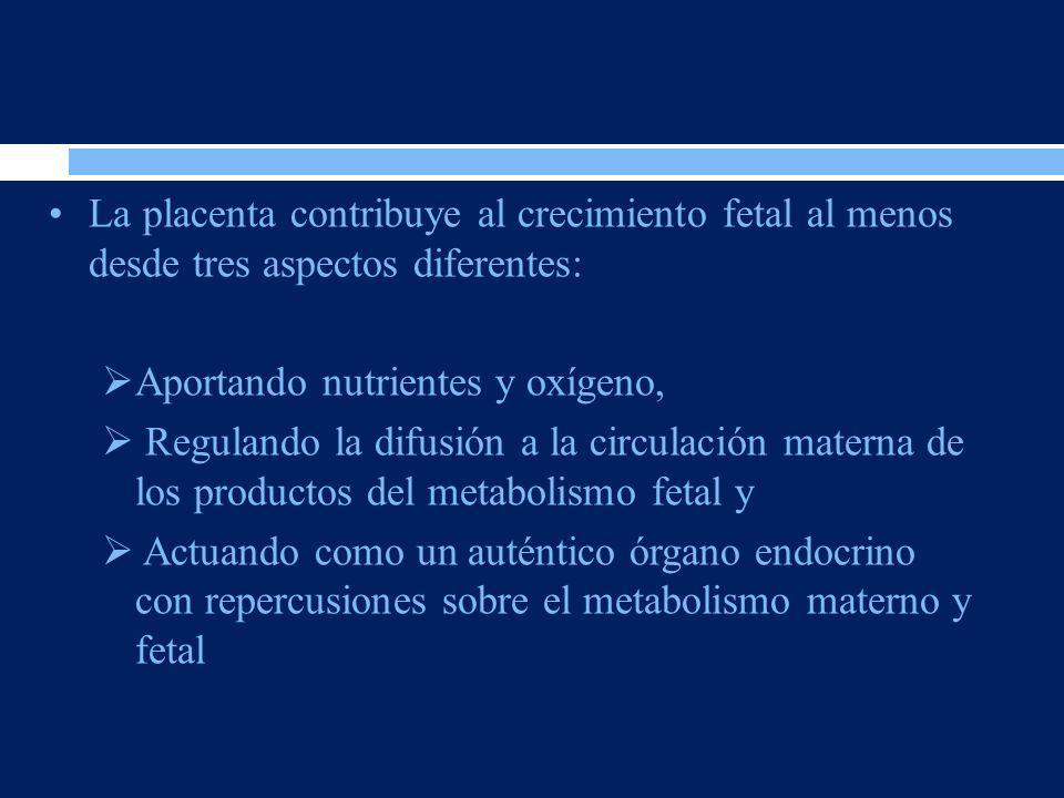 La placenta contribuye al crecimiento fetal al menos desde tres aspectos diferentes: Aportando nutrientes y oxígeno, Regulando la difusión a la circul