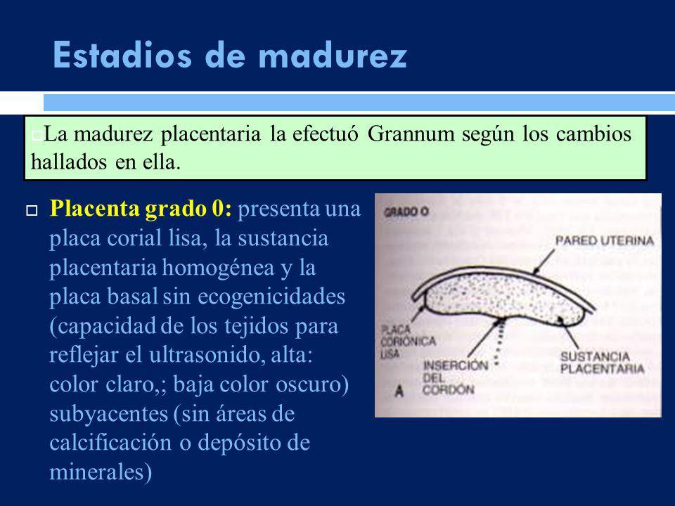 Placenta grado 0: presenta una placa corial lisa, la sustancia placentaria homogénea y la placa basal sin ecogenicidades (capacidad de los tejidos par