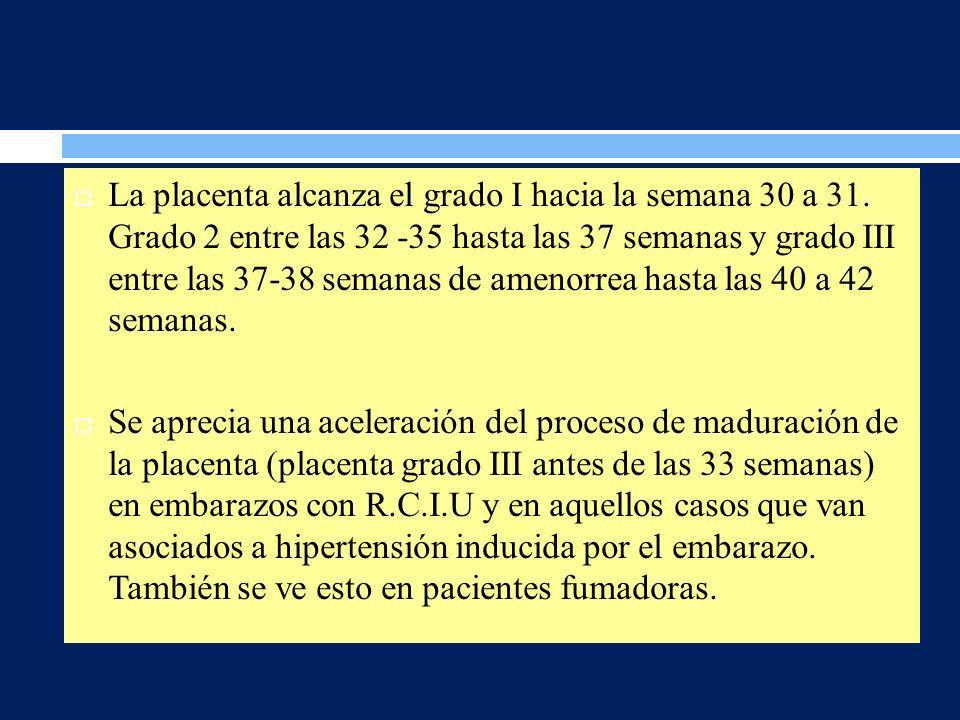 La placenta alcanza el grado I hacia la semana 30 a 31. Grado 2 entre las 32 -35 hasta las 37 semanas y grado III entre las 37-38 semanas de amenorrea