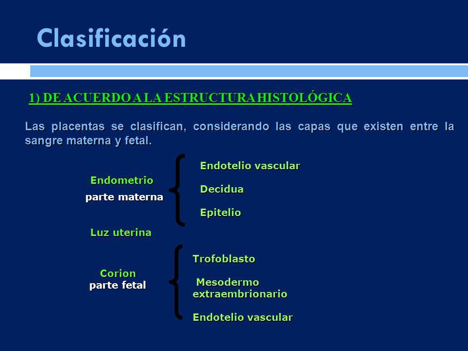 Clasificación Las placentas se clasifican, considerando las capas que existen entre la sangre materna y fetal. Endometrio parte materna Endotelio vasc