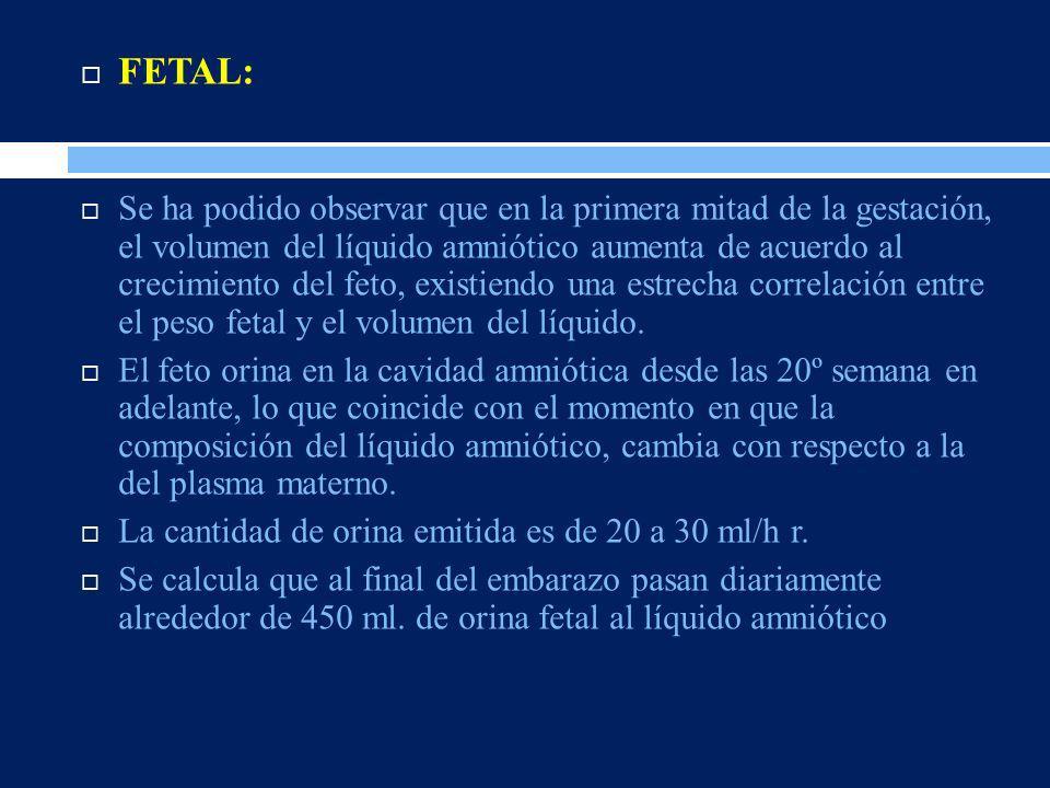 FETAL: Se ha podido observar que en la primera mitad de la gestación, el volumen del líquido amniótico aumenta de acuerdo al crecimiento del feto, exi