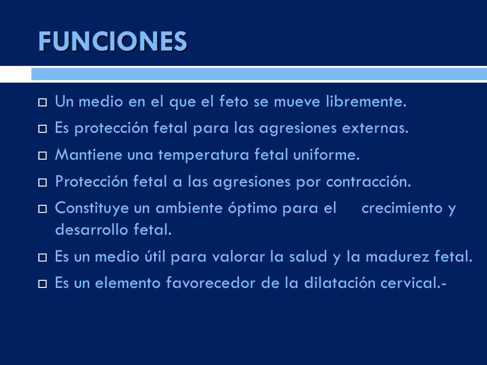 FUNCIONES Un medio en el que el feto se mueve libremente. Es protección fetal para las agresiones externas. Mantiene una temperatura fetal uniforme. P