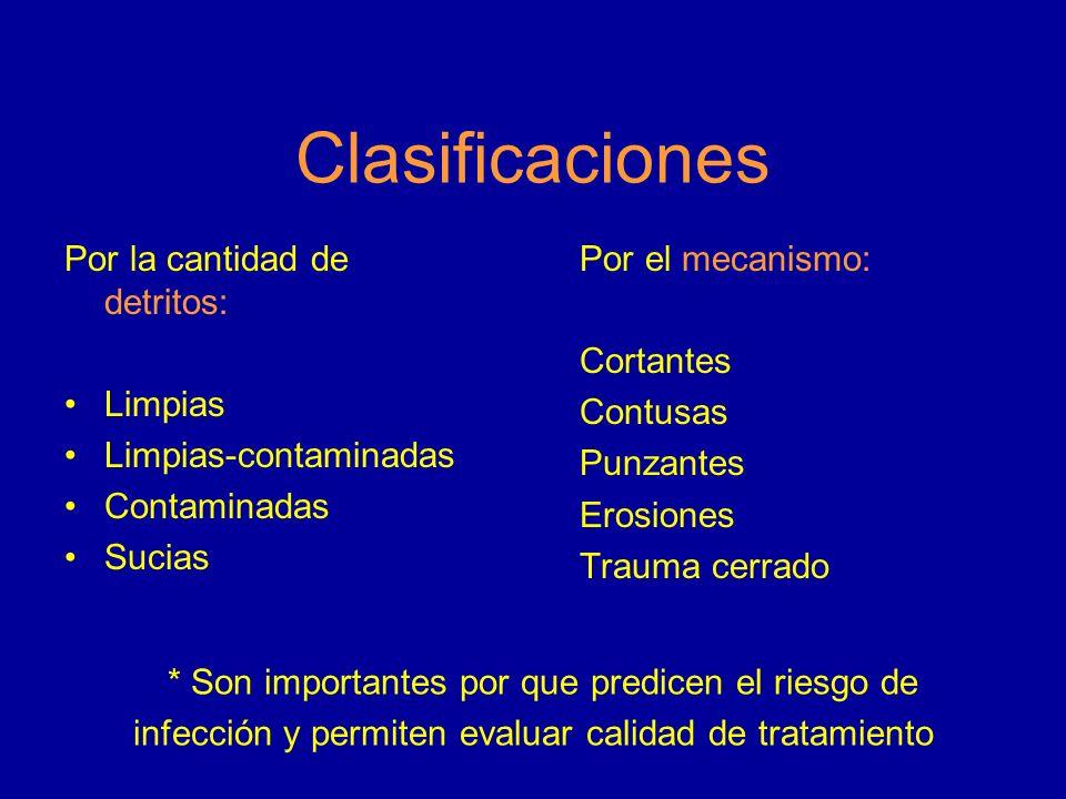 Clasificaciones * Son importantes por que predicen el riesgo de infección y permiten evaluar calidad de tratamiento Por la cantidad de detritos: Limpi