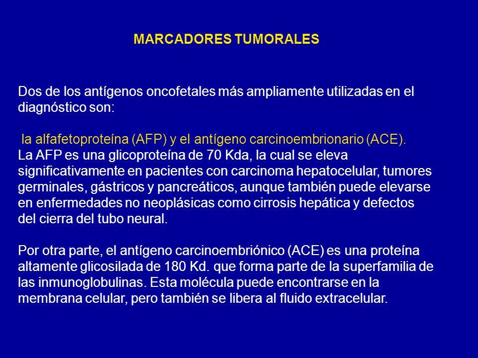 Dos de los antígenos oncofetales más ampliamente utilizadas en el diagnóstico son: la alfafetoproteína (AFP) y el antígeno carcinoembrionario (ACE). L