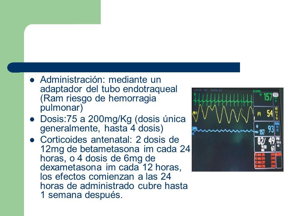 Administración: mediante un adaptador del tubo endotraqueal (Ram riesgo de hemorragia pulmonar) Dosis:75 a 200mg/Kg (dosis única generalmente, hasta 4