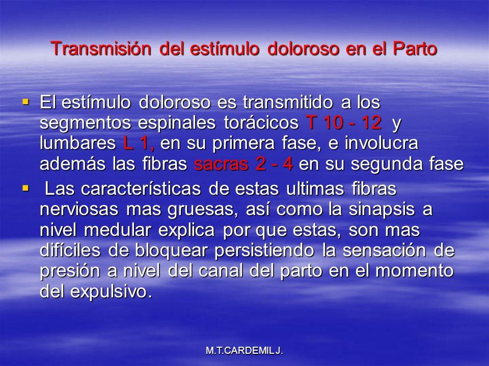 M.T.CARDEMIL J. Transmisión del estímulo doloroso en el Parto El estímulo doloroso es transmitido a los segmentos espinales torácicos T 10 - 12 y lumb