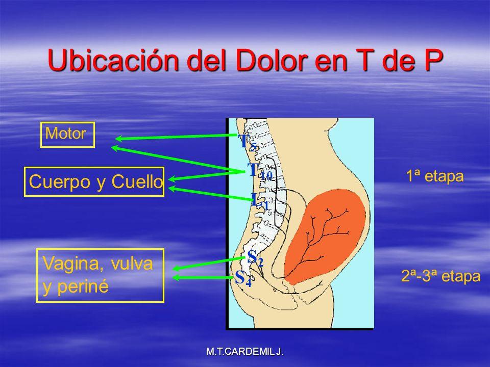 M.T.CARDEMIL J. Ubicación del Dolor en T de P L1L1 Cuerpo y Cuello S2S2 S4S4 Vagina, vulva y periné T 10 Motor T5T5 1ª etapa 2ª-3ª etapa